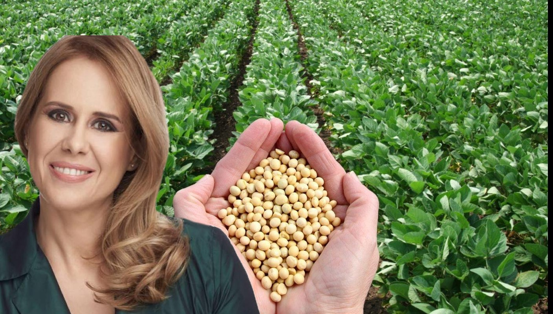 Mihaela Bilic este de parere ca poti avea dezechilibre mari hormonale prin consumul de soia
